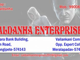 SALDANHA ENTERPRISES