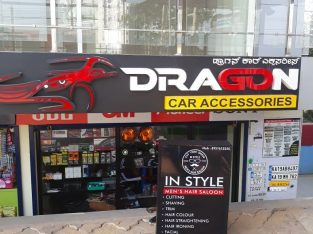 Dragon Car Accessories