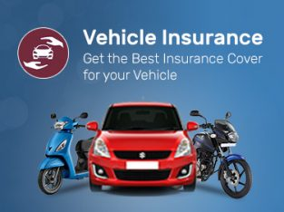 Kattavu Insurance