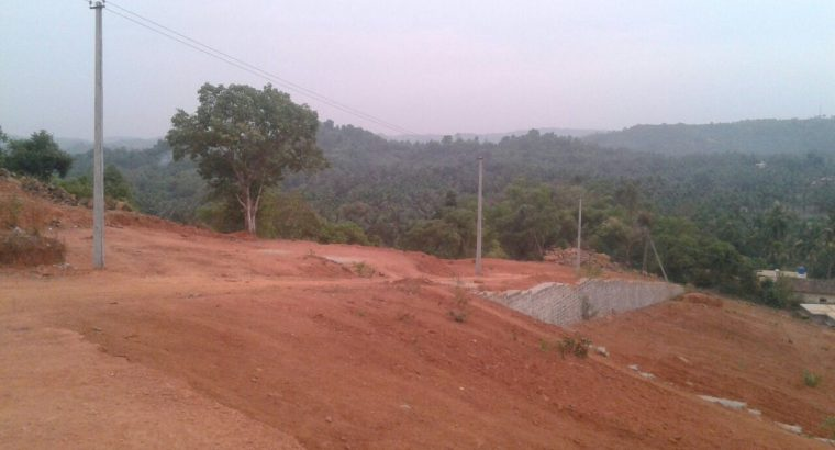 Site for SALE in Ganjimutt