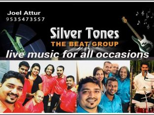 Band Silver Tones