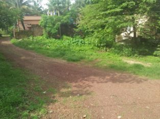 Land for Sale in Vamanjoor
