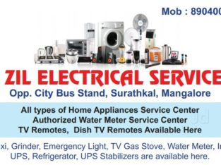 V Zil Electrical Services